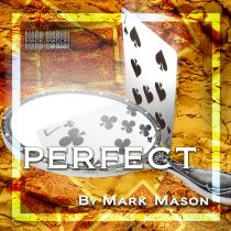 PERFECT BY MARK MASON